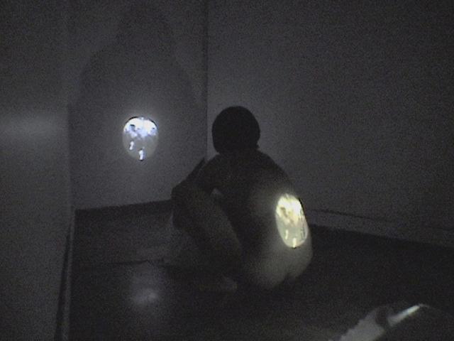 see through (2008) by Annie Onyi Cheung